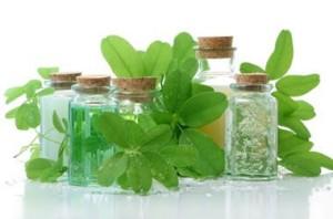 leczenie pasożytów ziołami